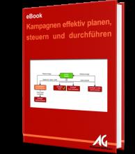 eBook Kampagnen effektiv planen, steuern und durchführen